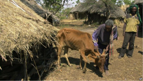 The real measure and depth of poverty in Ethiopia