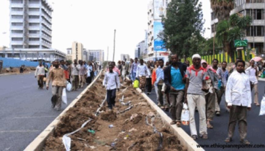 Addis Abeba's renewal, massive inequality, grand land heists