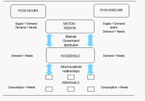 FAO: Concepts of food security