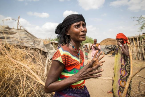In this photo taken Tuesday, Jan. 26, 2016, Mayrem Humeyisu talks about food supply in her neighborhood in a rural village Dubti Woreda, Afar, Ethiopia. Morbid thoughts linger on people's minds in the area. The crops have failed and farm animals have been dying amid severe drought that has left Ethiopia appealing for international help to feed its people. (AP Photo/Mulugeta Ayene)[/caption]