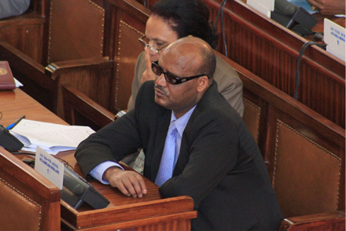 Gov't whip in parliament Asmelsash Woldesellasie (Reporter)