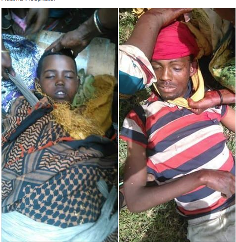 Among the TPLF victims of daily Oromo deaths