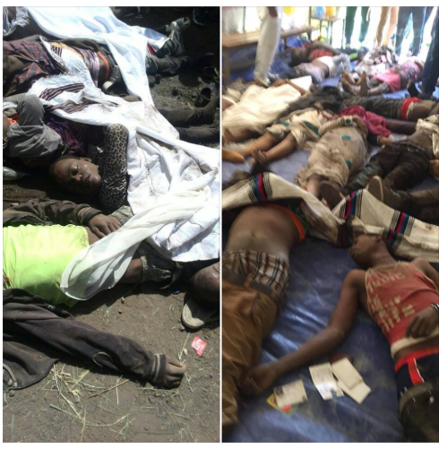 Dead bodies of Ireecha celebrants (social media pictures)