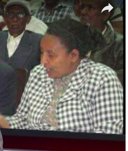 W/O Addise Zeleke at a meeting (From ESAT video)