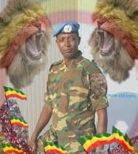Col. Demeke Zewdu, former UN peacekeeper (Borkena)